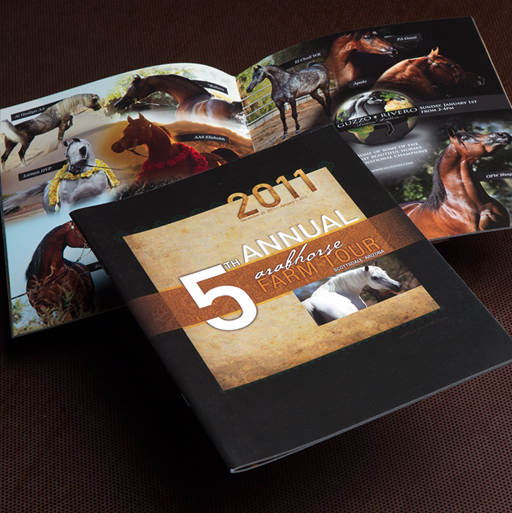 ARABIAN HORSE ASSCIATION Brochure